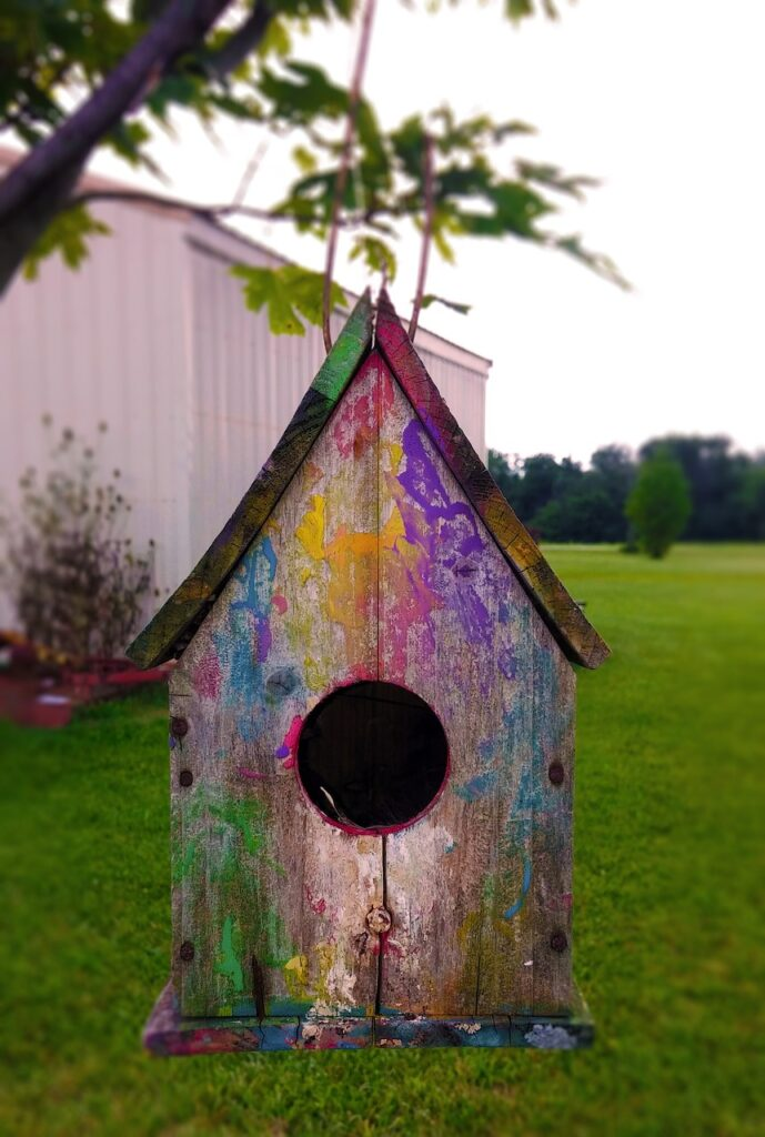 birdhouse, bird, house